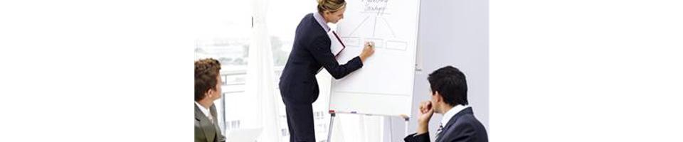 OrganizationalEffectivenessBanner960x200